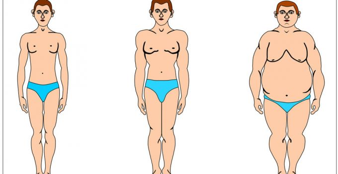 How to loss weight for all body types