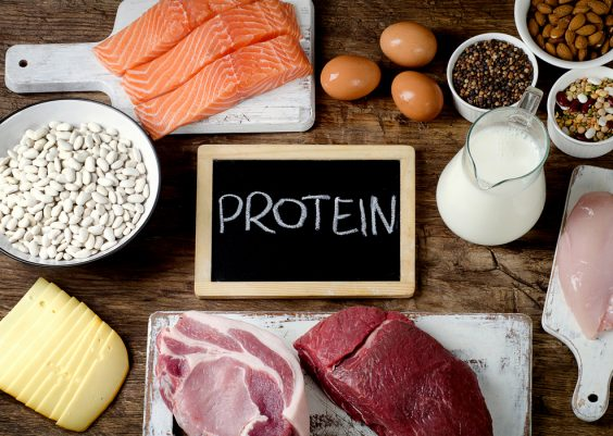 21 Delicious High Protein Foods to Eat for Metabolism
