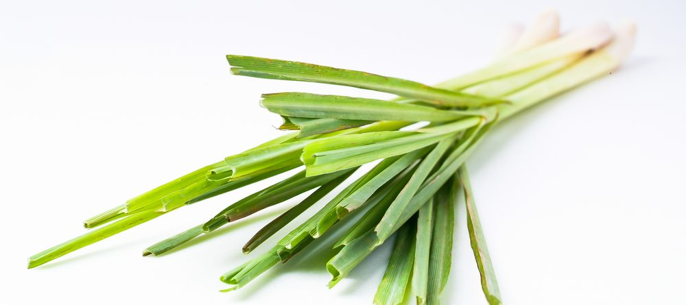 11 Surprising Benefits of Lemongrass