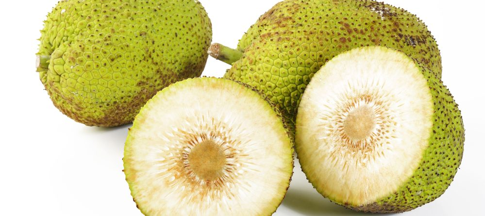 breadfruit health benefits